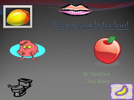 BY TAMEKA And Sharee. Eating the apple Eating the apple Firstly the food goes in the mouth; it is chewed in to little pieces.