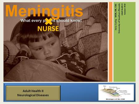 Meningitis Jerry Carley MSN, RN, CNE University of Southern Nevada Adult Health II Summer 2010 NURSE Adult Health II Neurological Diseases.
