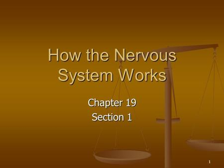 1 How the Nervous System Works Chapter 19 Section 1.
