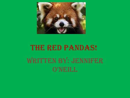 The Red Pandas! Written by: Jennifer O'Neill. What do the amazing red pandas look like and do? The red panda is chestnut colored with alternating light.