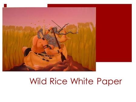 Wild Rice White Paper. ANISHINAABE STANCE ON MANOOMIN  Manoomin is a sacred plant.  Manoomin is a living entity that has it's own unique spirit.  We.
