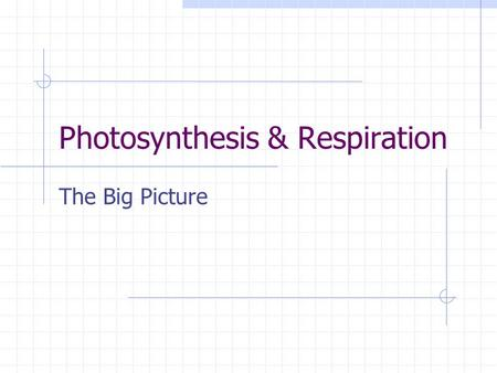 Photosynthesis & Respiration The Big Picture. Photosynthesis 6CO 2 + 6H 2 O + Light C 6 H 12 O6 + 6O 2 Six molecules of carbon dioxide plus six molecules.