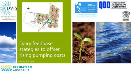 Dairy feedbase stategies to offset rising pumping costs Pat Daley, Mark Callow.
