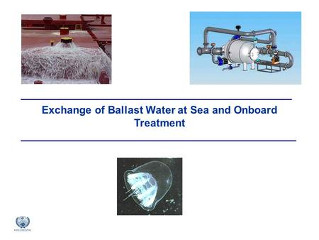 Exchange of Ballast Water at Sea and Onboard Treatment