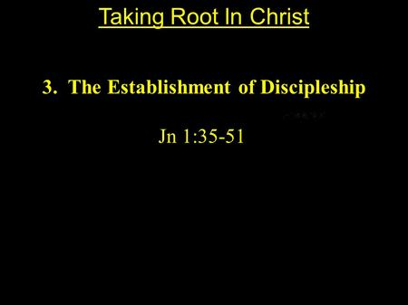 3. The Establishment of Discipleship Jn 1:35-51 Taking Root In Christ.