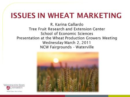 ISSUES IN WHEAT MARKETING R. Karina Gallardo Tree Fruit Research and Extension Center School of Economic Sciences Presentation at the Wheat Production.