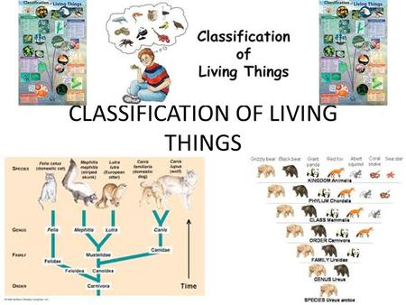 CLASSIFICATION OF LIVING THINGS. ABOUT HOW MANY LIVING THINGS EXIST ON EARTH? – 1.5 MILLION KNOWN ORGANISMS – THOUSANDS MORE IDENTIFIED EACH YEAR – ABOUT.