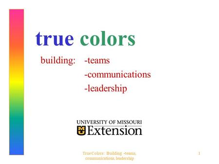 True Colors: Building -teams, communications, leadership 1 true colors building: -teams -communications -leadership.