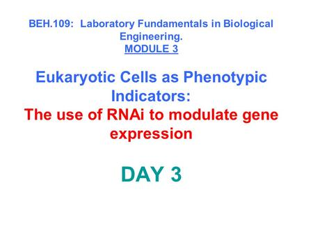 BEH.109: Laboratory Fundamentals in Biological Engineering. MODULE 3 Eukaryotic Cells as Phenotypic Indicators: The use of RNAi to modulate gene expression.