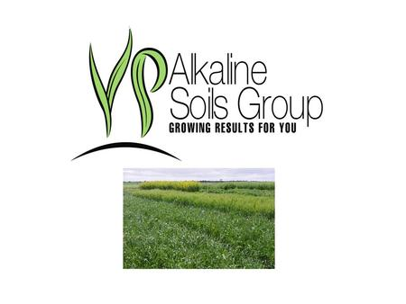 Www.alkalinesoilsgroup.com.au. THE YORKE PENINSULA ALKALINE SOILS GROUP HAS BEEN ESTABLISHED FOR 14 YEARS, THE LAST YEAR HAS SEEN A CHANGE IN STAFFING,