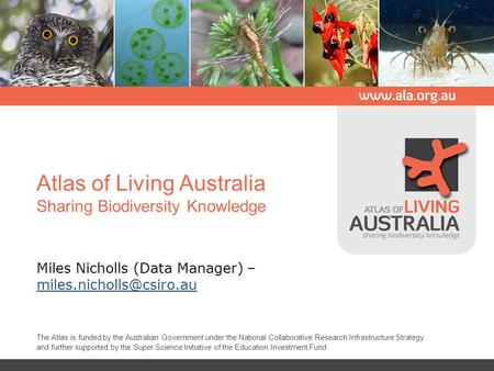 Atlas of Living Australia Sharing Biodiversity Knowledge Miles Nicholls (Data Manager) –  The Atlas is funded.