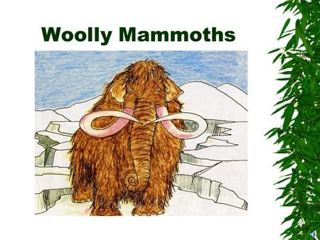 Woolly Mammoths What do you know about woolly mammoths? This is an anticipation guide for our story in TIME DETECTIVES on pages 86-95. Read the questions.