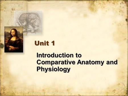 Introduction to Comparative Anatomy and Physiology Unit 1.