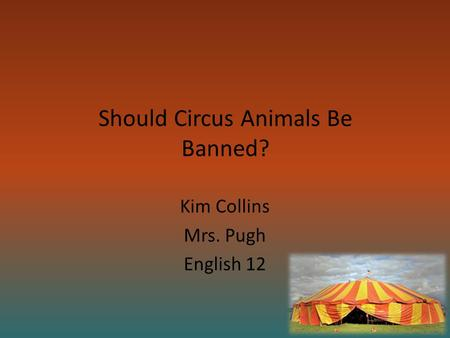 Should Circus Animals Be Banned? Kim Collins Mrs. Pugh English 12.