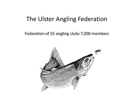 The Ulster Angling Federation Federation of 55 angling clubs 7,000 members.