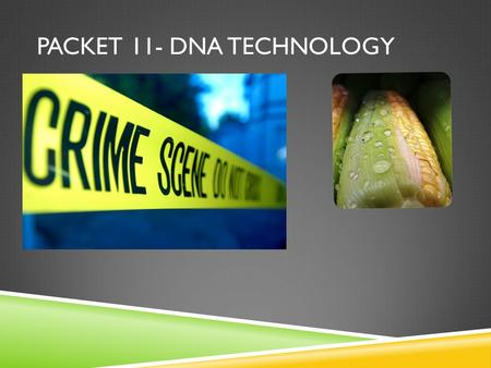 PACKET 11- DNA TECHNOLOGY. WHAT DO WE ALREADY KNOW ABOUT DNA?  DNA is __________ stranded  DNA is made up of four bases: ____, ____,_____, and _____.