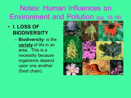 Notes: Human Influences on Environment and Pollution (pg. 16-18) I. LOSS OF BIODIVERSITY –Biodiversity- is the variety of life in an area. This is a necessity.