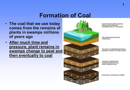 1 Formation of Coal The coal that we use today comes from the remains of plants in swamps millions of years ago After much time and pressure, plant remains.