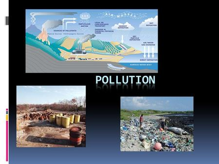 Types of Pollution  Nitrogen (wastewater, farming)  Pharmaceuticals  Garbage  Heavy metals (Hg, Zn, Pb, Fe)  Chemicals (PCB's, industrial waste)