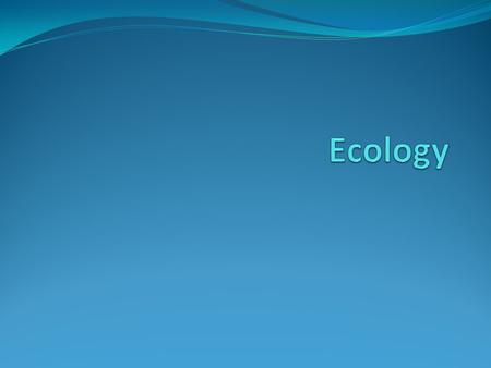 What is Ecology? Ecology Definition - the study of interactions among organisms and between organisms in their environment.