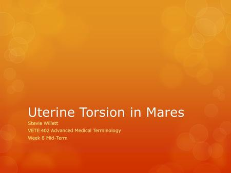 Uterine Torsion in Mares Stevie Willett VETE 402 Advanced Medical Terminology Week 8 Mid-Term.