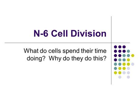 N-6 Cell Division What do cells spend their time doing? Why do they do this?