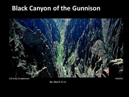 Black Canyon of the Gunnison By: Alex D. D-11. Black Canyon of the Gunnison National park is 32,985 acres.