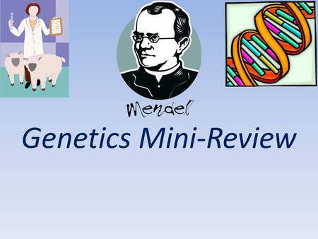 Genetics Mini-Review. CDQ 2 Sexual Reproduction and Genetics Chapter 11 A. Felix Mendelssohn B. Gregor Mendel C. Dr. Reginald Punnett D. Albert Einstein.