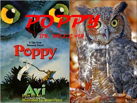 Book by: Avi Illustrated by: Brian Floca. Mr.Ocax In Dimwood forest there lived a great horned owl. His name is Mr.Ocax all the mice say he's death himself.