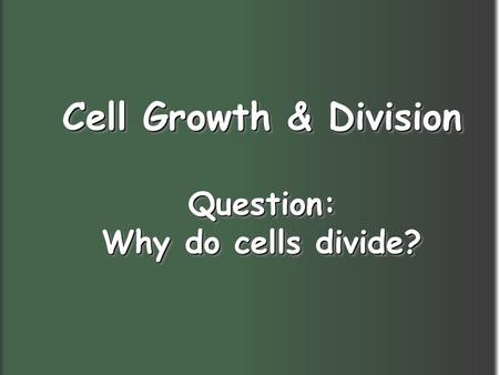 Cell Growth & Division Question: Why do cells divide?