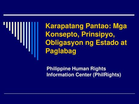 Philippine Human Rights Information Center (PhilRights)