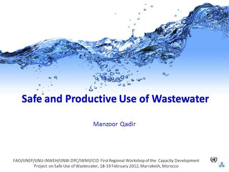 Manzoor Qadir FAO/UNEP/UNU-INWEH/UNW-DPC/IWMI/ICID First Regional Workshop of the Capacity Development Project on Safe Use of Wastewater, 18-19 February.