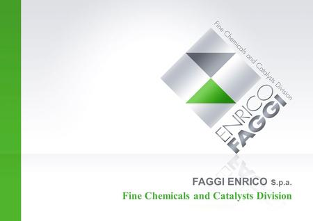 FAGGI ENRICO S.p.a. Fine Chemicals and Catalysts Division.