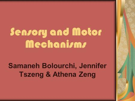 Sensory and Motor Mechanisms Samaneh Bolourchi, Jennifer Tszeng & Athena Zeng.