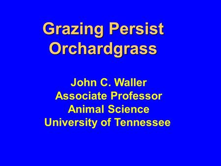 Grazing Persist Orchardgrass John C. Waller Associate Professor Animal Science University of Tennessee.