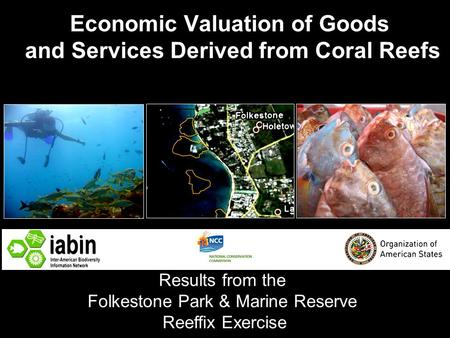 Economic Valuation of Goods and Services Derived from Coral Reefs Results from the Folkestone Park & Marine Reserve Reeffix Exercise.