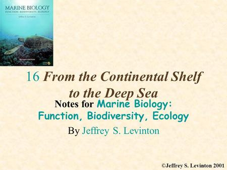 16 From the Continental Shelf to the Deep Sea Notes for Marine Biology: Function, Biodiversity, Ecology By Jeffrey S. Levinton ©Jeffrey S. Levinton 2001.