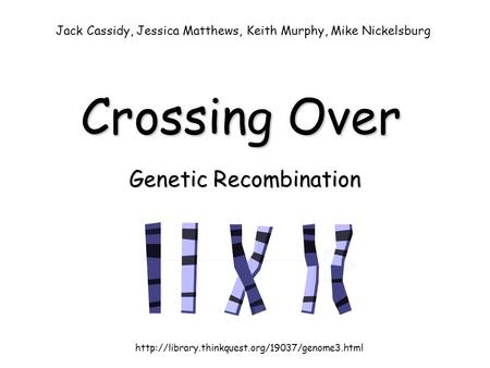 Crossing Over Genetic Recombination  Jack Cassidy, Jessica Matthews, Keith Murphy, Mike Nickelsburg.