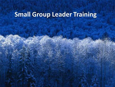 Small Group Leader Training. 1. WHAT DOES EVERY SUNDAY SCHOOL CLASS NEED TO EXIST?