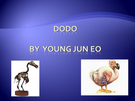  Extinct animals are species, or kinds of animals that have all died many years ago. For example dinosaurs became extinct millions of years ago. Dodo.