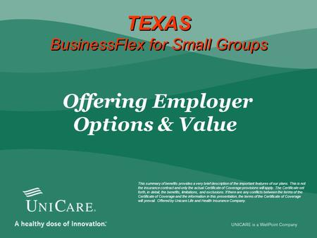 TEXAS BusinessFlex for Small Groups  Offering Employer Options & Value This summary of benefits provides a very brief description of the important features.