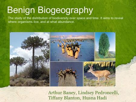Benign Biogeography Arthur Baney, Lindsey Pedroncelli, Tiffany Blanton, Husna Hadi The study of the distribution of biodiversity over space and time. It.