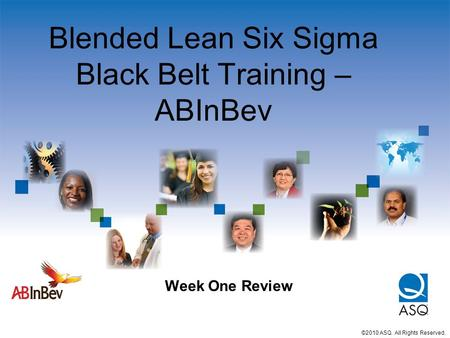Blended Lean Six Sigma Black Belt Training – ABInBev