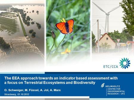1 The EEA approach towards an indicator based assessment with a focus on Terrestrial Ecosystems and Biodiversity O. Schweiger, M. Füssel, A. Jol, A. Marx.