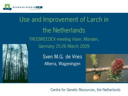Centre for Genetic Resources, the Netherlands Use and Improvement of Larch in the Netherlands TREEBREEDEX meeting Hann. Münden, Germany 25-26 March 2009.