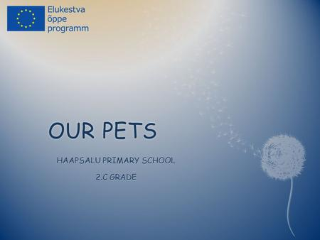 OUR PETSOUR PETS HAAPSALU PRIMARY SCHOOL 2.C GRADE.