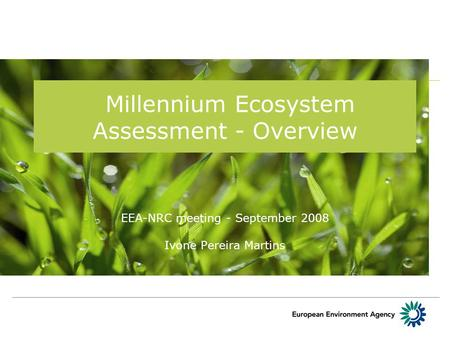 Millennium Ecosystem Assessment - Overview EEA-NRC meeting - September 2008 Ivone Pereira Martins.