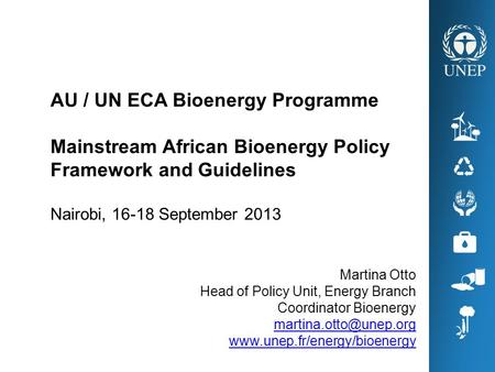 Martina Otto Head of Policy Unit, Energy Branch Coordinator Bioenergy  AU / UN ECA Bioenergy Programme.