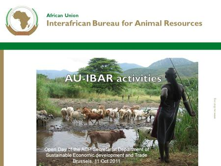 African Union Interafrican Bureau for Animal Resources www.au-ibar.org Open Day of the ACP Secretariat Department of Sustainable Economic development and.