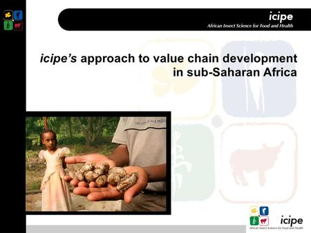 Icipe's approach to value chain development in sub-Saharan Africa.